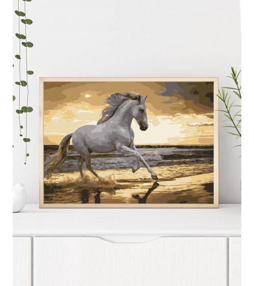 Malowanie po numerach Koń o...