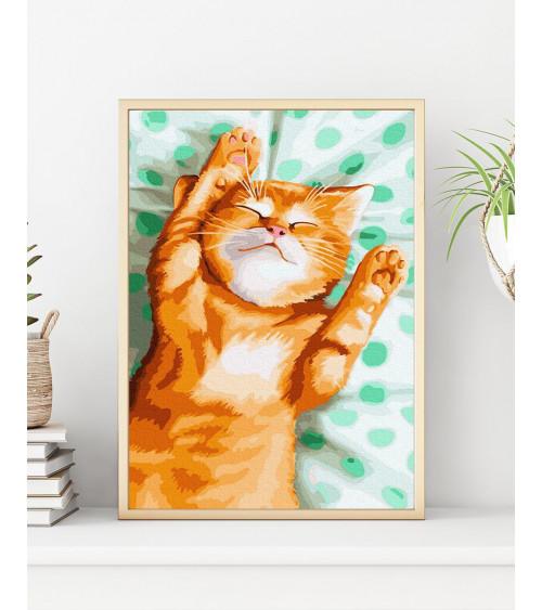Malowanie po numerach Rudy kot